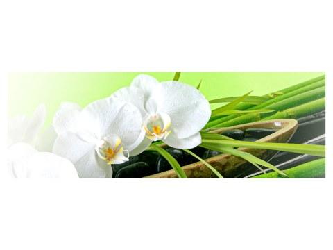 orquídeas Poster
